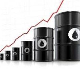 tjäna pengar på att investera i råolja